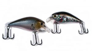 Lucky Craft LC 2.5 Ghost Minnow Vs LC 1.5 BP Golden Shiner